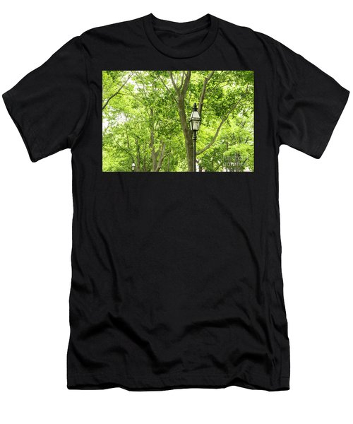 Lanterns Among The Trees Men's T-Shirt (Athletic Fit)