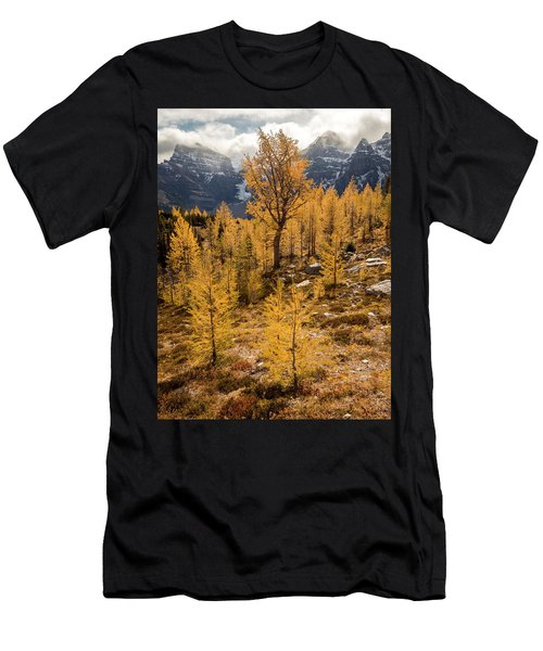 Larch Family Men's T-Shirt (Athletic Fit)