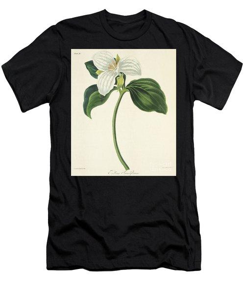 Large Flowered Trillium Men's T-Shirt (Athletic Fit)