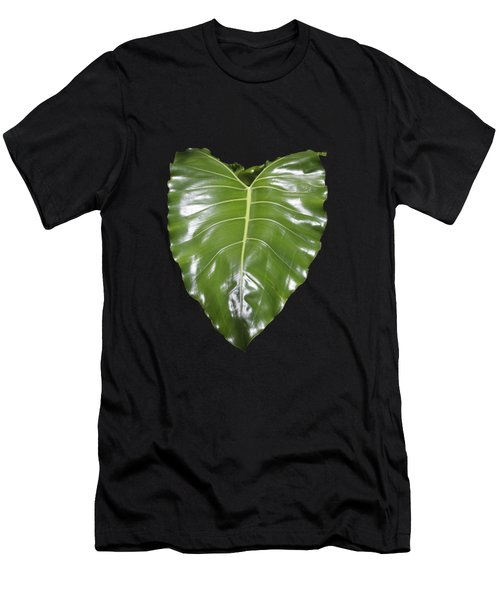 Large Leaf Transparency Men's T-Shirt (Athletic Fit)