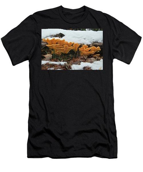 Last Mushrooms Of The Seasons Men's T-Shirt (Athletic Fit)