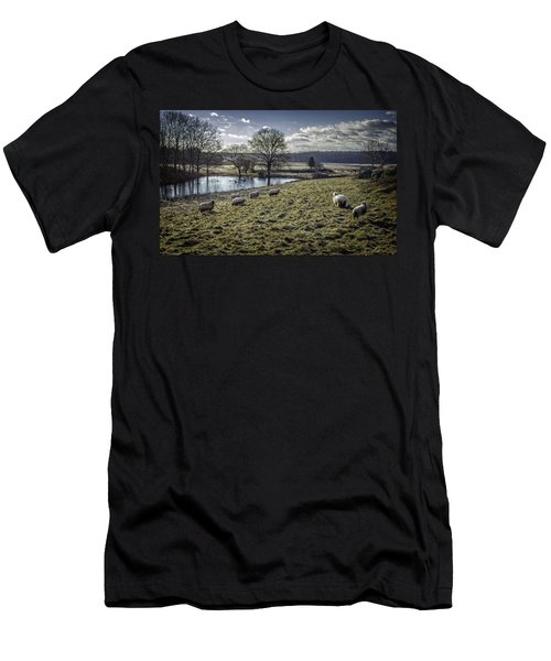 Late Fall Pastoral Men's T-Shirt (Athletic Fit)