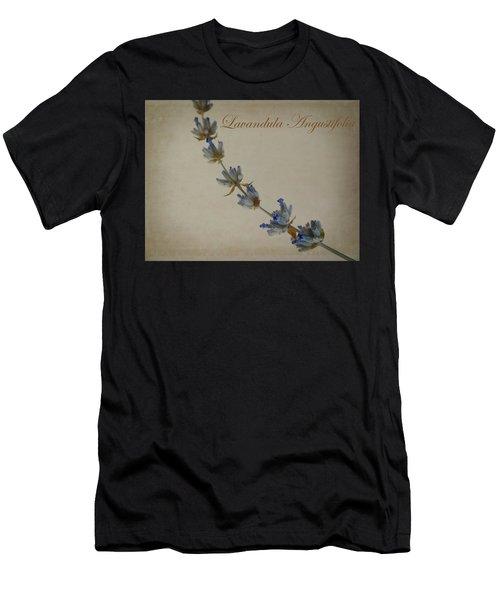 Lavandula Angustifolia Men's T-Shirt (Athletic Fit)