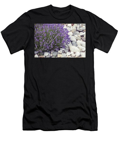 Lavender Flower In The Garden,park,backyard,meadow Blossom In Th Men's T-Shirt (Athletic Fit)