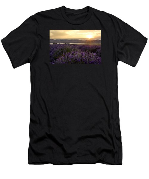 Lavender Glow Men's T-Shirt (Athletic Fit)