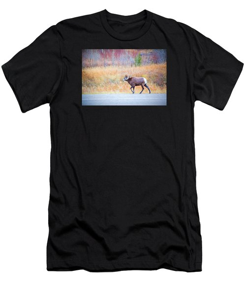 Leader Of The Herd Men's T-Shirt (Athletic Fit)