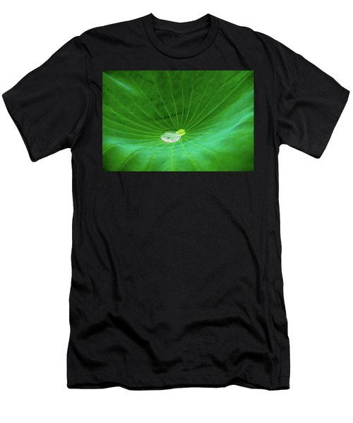 Leaf Cupping A Giant Water Drop Men's T-Shirt (Athletic Fit)