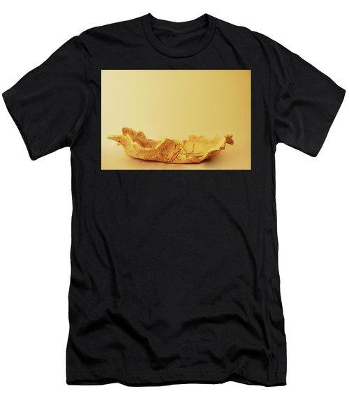 Leaf Plate2 Men's T-Shirt (Athletic Fit)