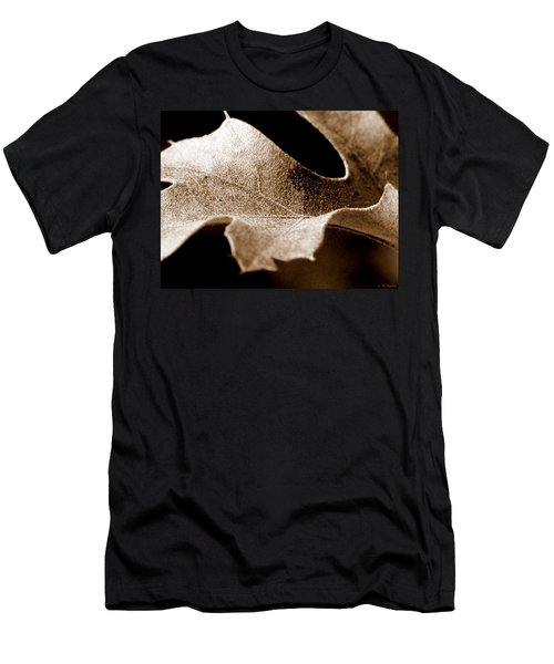 Leaf Study In Sepia Men's T-Shirt (Slim Fit) by Lauren Radke
