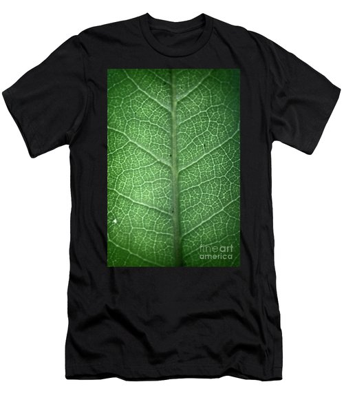 Leaf Vein Men's T-Shirt (Athletic Fit)
