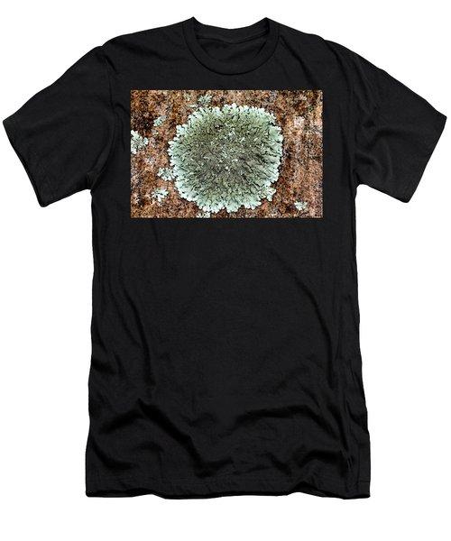 Leafy Lichen Men's T-Shirt (Athletic Fit)