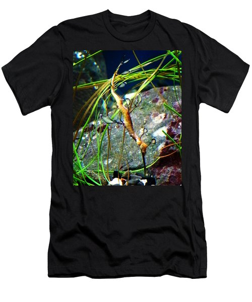 Leafy Sea Dragon  Men's T-Shirt (Athletic Fit)