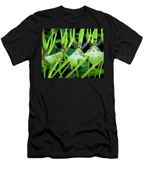 Leap Frog Men's T-Shirt (Athletic Fit)