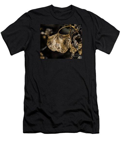 Leaves 4 Men's T-Shirt (Athletic Fit)