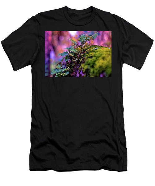 Leaves On A Log Men's T-Shirt (Athletic Fit)