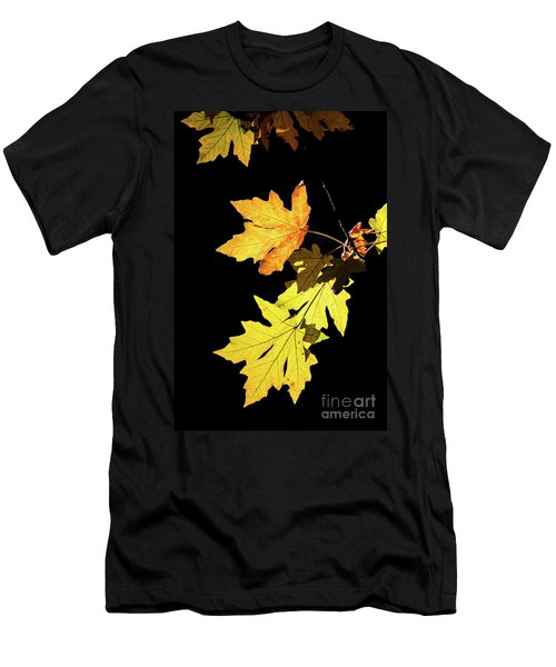 Leaves On Black Men's T-Shirt (Athletic Fit)