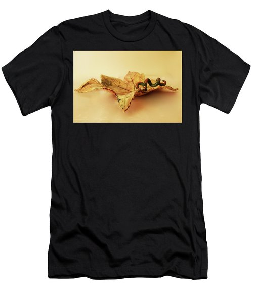 Leaf Plate 1 Men's T-Shirt (Athletic Fit)