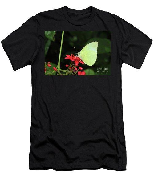 Lemon Emigrant Butterfly Men's T-Shirt (Athletic Fit)
