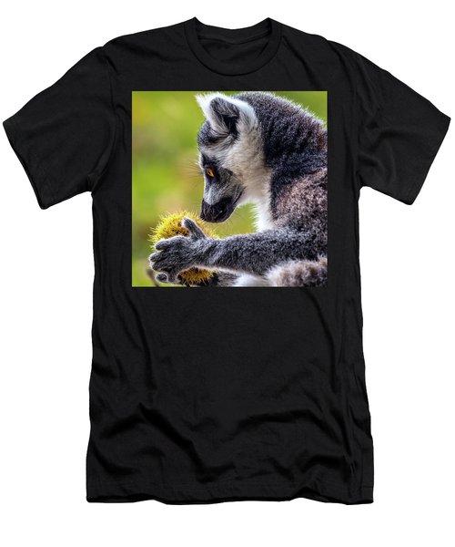 Lemur And Sweet Chestnut Men's T-Shirt (Athletic Fit)