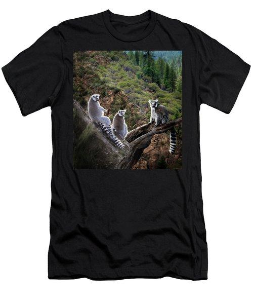 Lemur Family Men's T-Shirt (Slim Fit) by Melinda Hughes-Berland