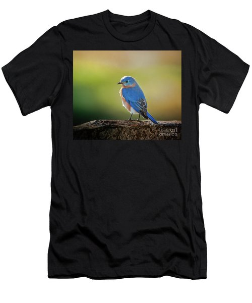 Lenore's Bluebird Men's T-Shirt (Athletic Fit)