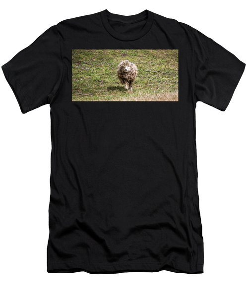 Lettie The Leicester Longwool Men's T-Shirt (Athletic Fit)