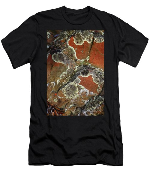 Lichen Abstract Men's T-Shirt (Athletic Fit)