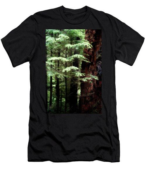 Light On Trees Men's T-Shirt (Athletic Fit)