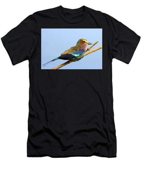 Lilac-breasted Roller Men's T-Shirt (Athletic Fit)