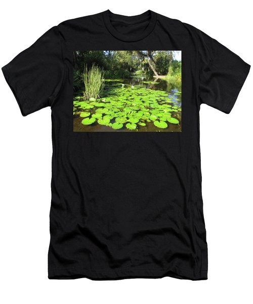 Lilies Of Bok Gardens Men's T-Shirt (Athletic Fit)
