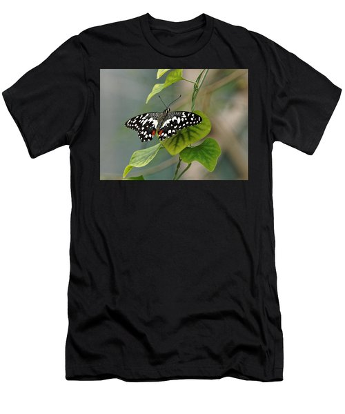 Men's T-Shirt (Athletic Fit) featuring the photograph Lime/chequered Swallowtail Butterfly by Paul Gulliver