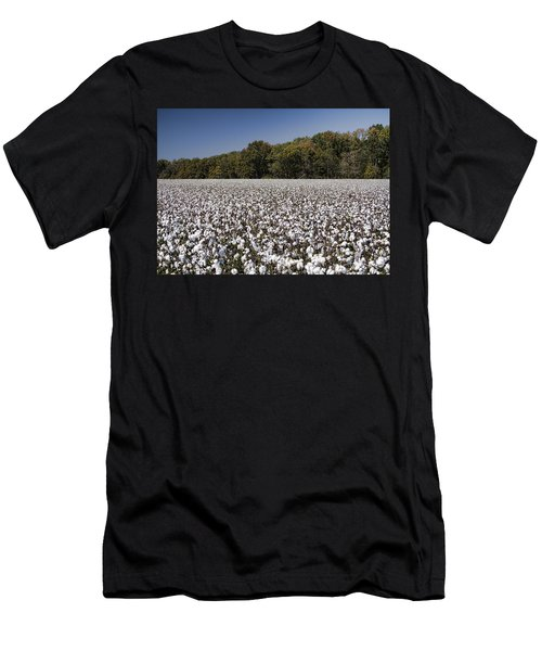 Limestone County Alabama Cotton Crop Men's T-Shirt (Athletic Fit)