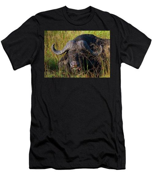 Lion Attack Survivor Men's T-Shirt (Athletic Fit)