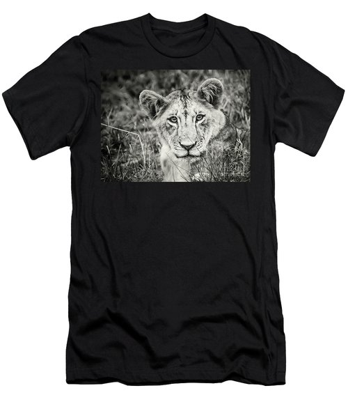 Lioness Portrait Men's T-Shirt (Athletic Fit)
