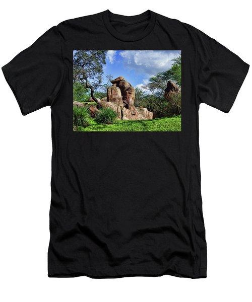 Lions On The Rock Men's T-Shirt (Slim Fit) by B Wayne Mullins