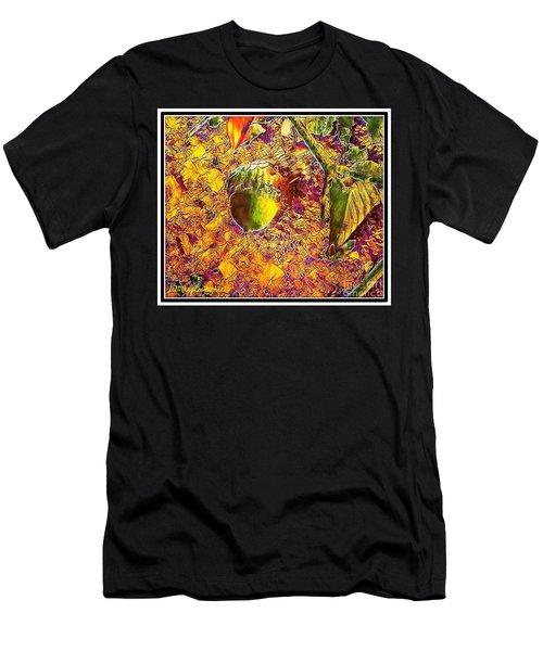 Little Acorn Men's T-Shirt (Athletic Fit)