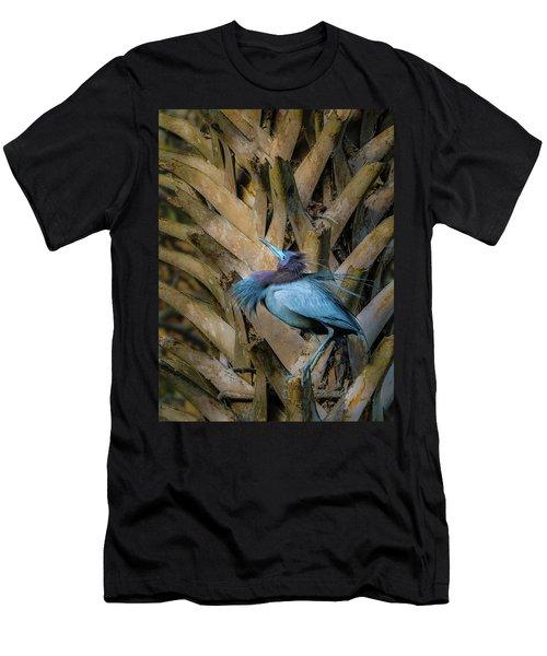 Little Blue Heron Men's T-Shirt (Athletic Fit)