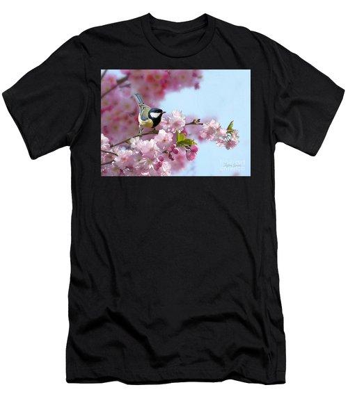 Little Coal Tit Men's T-Shirt (Athletic Fit)