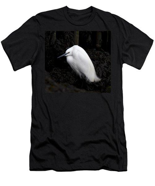 Little Egret Men's T-Shirt (Athletic Fit)