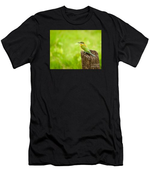 Little Green Bee-eater Men's T-Shirt (Athletic Fit)
