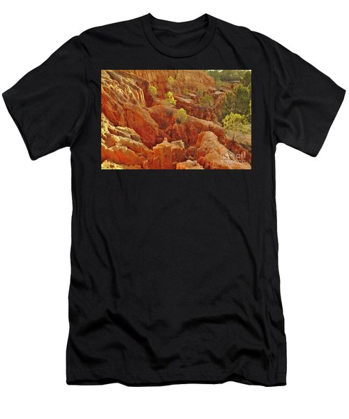 Little Pine Trees Growing On The Valley Cliffs Men's T-Shirt (Athletic Fit)