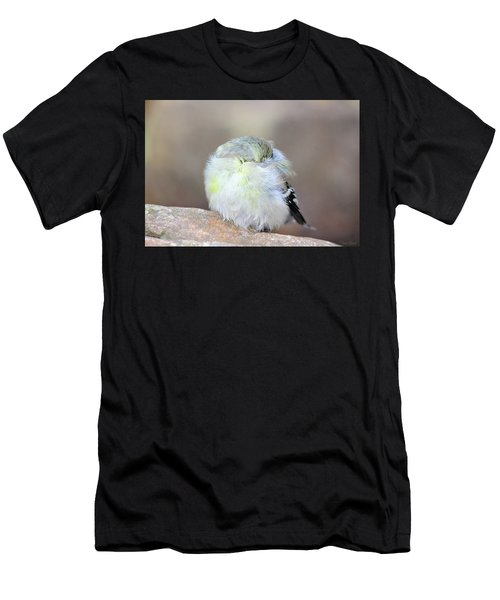 Little Sleeping Goldfinch Men's T-Shirt (Athletic Fit)