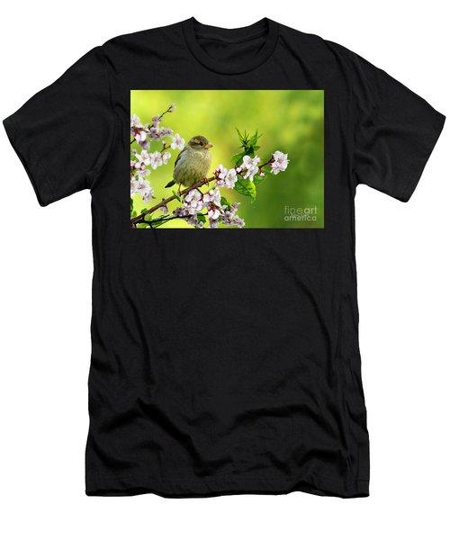 Little Sparrow Men's T-Shirt (Athletic Fit)