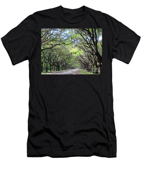 Live Oak Canopy Men's T-Shirt (Athletic Fit)