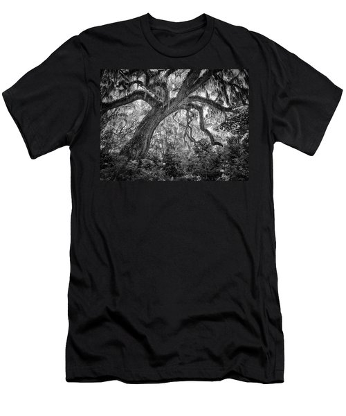 Live Oak Men's T-Shirt (Athletic Fit)