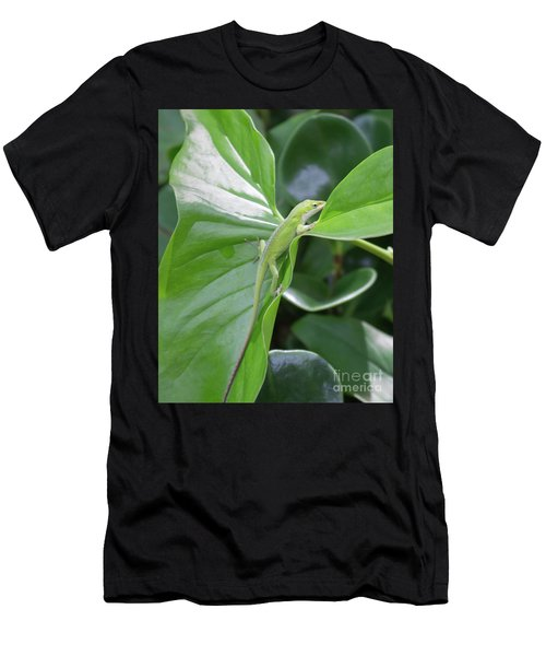 Lizard Waimea Trail Men's T-Shirt (Athletic Fit)
