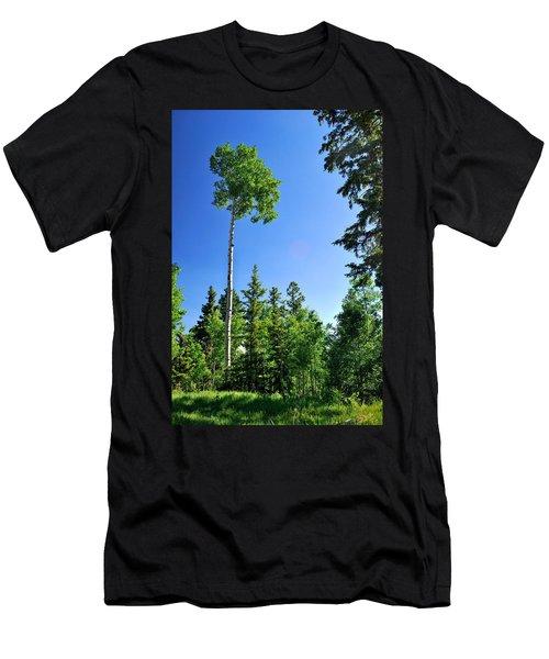Lone Aspen Men's T-Shirt (Athletic Fit)