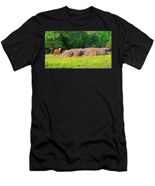 Lone Cow Guard, Smith Mountain Lake Men's T-Shirt (Athletic Fit)