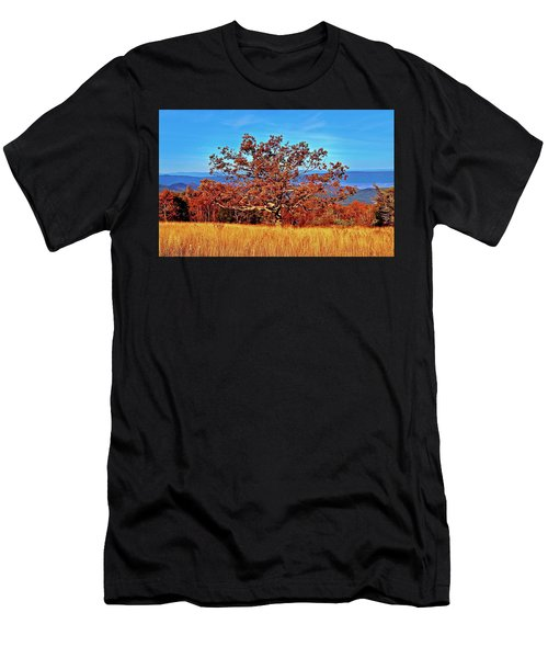 Lone Mountain Tree Men's T-Shirt (Athletic Fit)