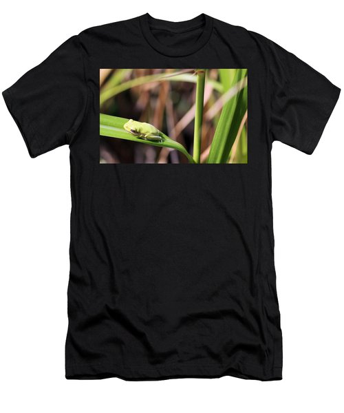 Lone Tree Frog Men's T-Shirt (Athletic Fit)